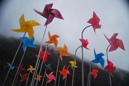 20090203_pinwheels