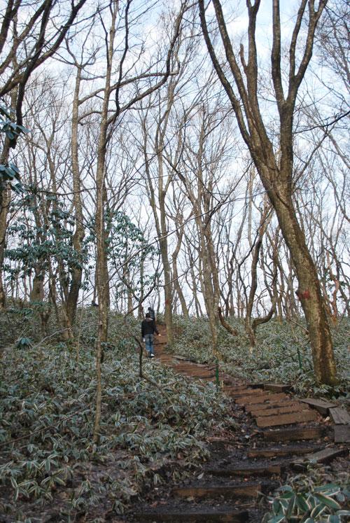 20090226_jeju_trail