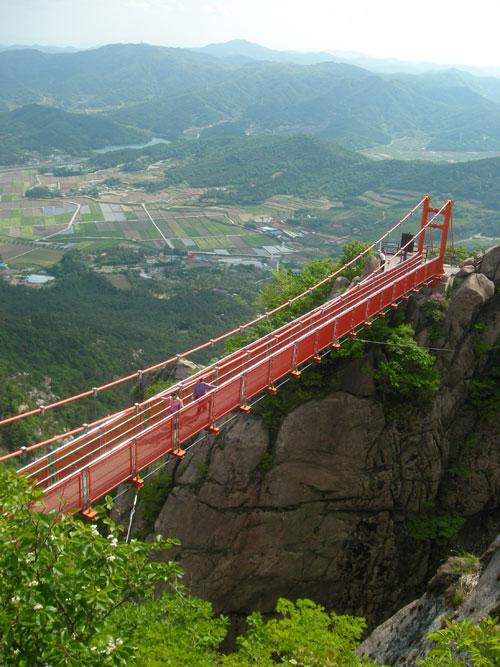 20090429_bridge