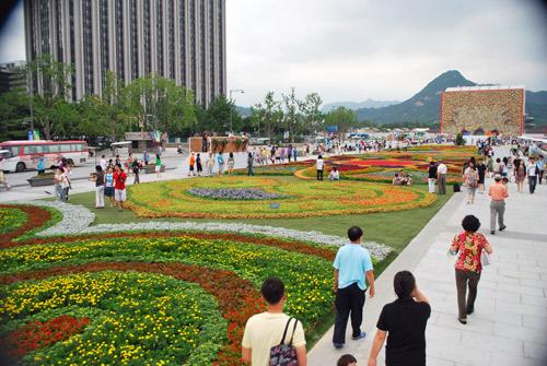20090810_flowercarpet