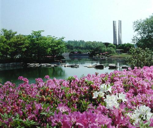 20090815_pond